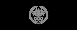 foygaal-client_aoc-grey